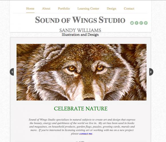 Sound of Wings Studio